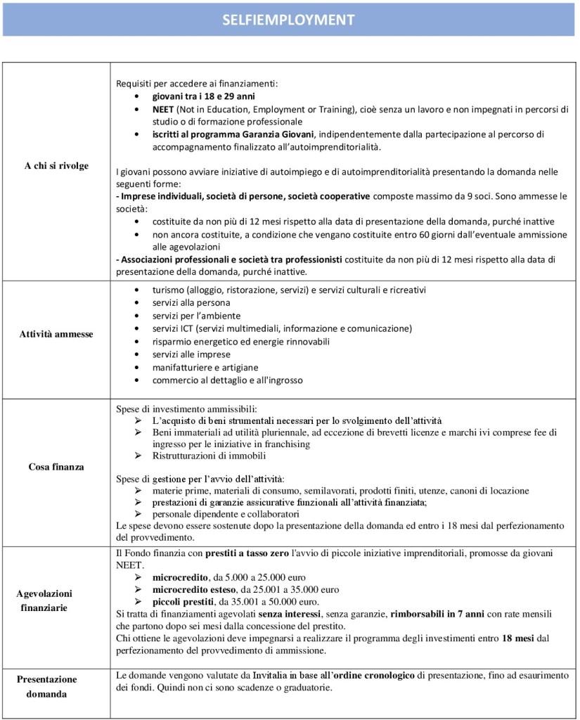 SELFIEmployment (1) rev-001 TABELLA